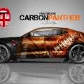Layout Camaro Carbon Panther