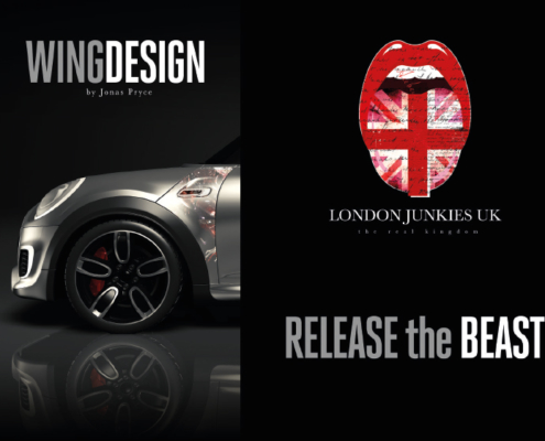 Mini Wing Design Release the Beast