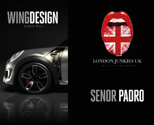 Mini Wing Design Senor Padro
